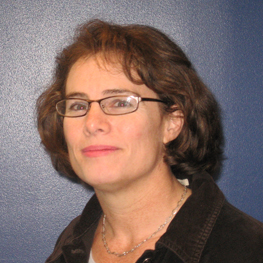 Lisa M. Frehill, the director of research, evaluation, and policy at the National Action Council for Minorities in Engineering